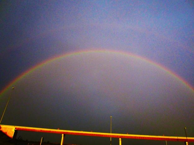 rainbow_double_july8